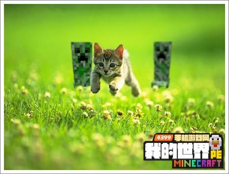 我的世界手机版豹猫怎么驯服