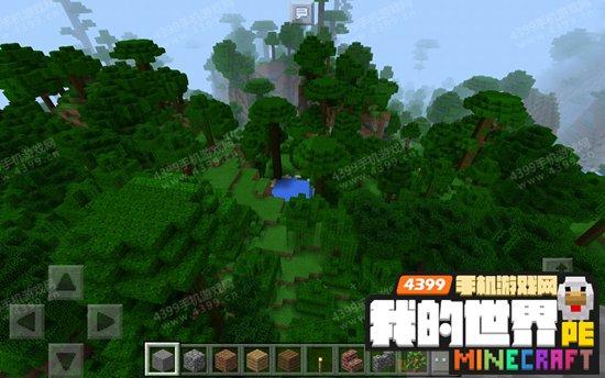 我的世界热带雨林种子