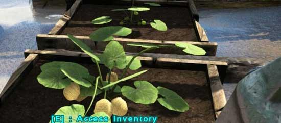方舟生存进化农作物