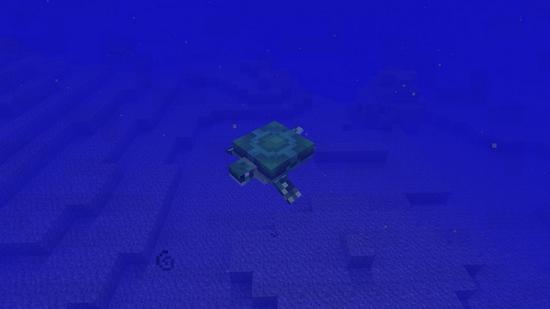 我的世界海龟攻略