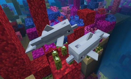 我的世界水域更新物种