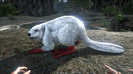 方舟生存进化河狸吃什么