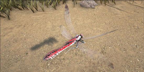 方舟生存进化蜻蜓哪里多