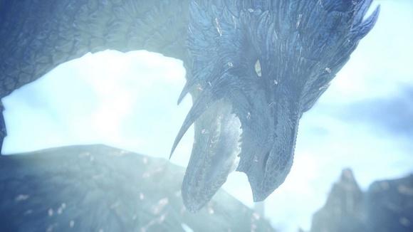 怪物猎人的龙