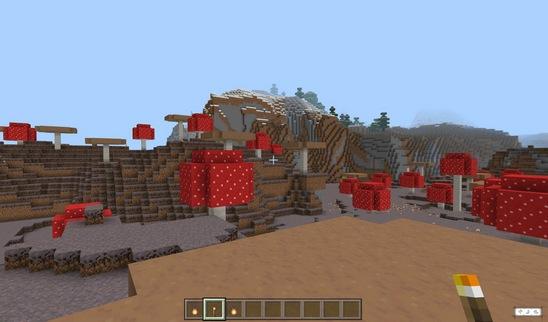我的世界村庄版本好玩种子推荐